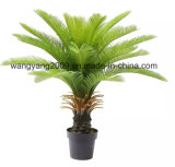 Artificial Fake Synthetic Cycas Potted Plants Bonsai