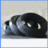 Black Iron Metal Wire Mesh with High Quality