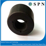 Customized Ferrite Magnet Multipole Rings