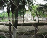 Zoo Enclosure Mesh From Kdl