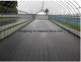 Polypropylene Nonwoven Weed Control Fabric in Roll