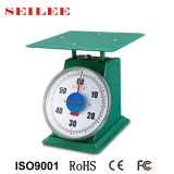 60kg Metal Painting Mechanical Spring Weighing Scale