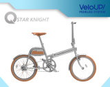 20-Inch 250W 36V Fashion Urban Electric Bike for Young People