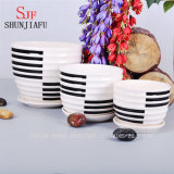Simple Flowerpot/ Black and White Stripes and Color Lines