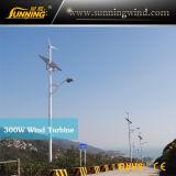 Wind Solar Hybrid Street Light/Wind Solar Hybrid Street Lamp