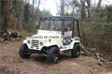 250cc/300cc UTV, ATV Quad 4 Stroke with Ce