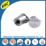 Electronical High Quality OEM Metal Stainless Steel M5 Rivet Bolt