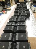 V25 Neodymium Line Array Double 15 Inch Line Array System