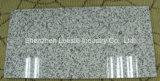 Top Quality Popular Polished Star Grey G655 Granite Stone