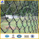 PVC Coated Chain Link Wire Mesh (HPZS-1018)