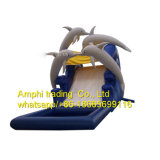 New Dolphin Water Slide Pool Slide Inflatable Water Slide