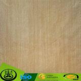 Wood Grain Decorative Paper Manufacturer in China