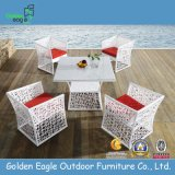 Garden Rattan Dining Set (FP0102)