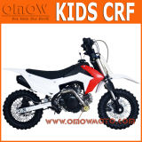 Newest Mini Size Kids Gas Pit Bike 50cc