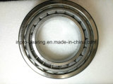 High Quality Tapered Roller Bearing with Low Price (30203)
