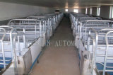 China Manufacture Good Quality Farrowing Crate /Pig Crate