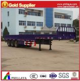 Semi Trailer Truck with Sidewalls Container Locks