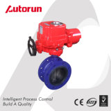 Cast Iron Electric Flange Butterfly Valve