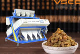 Iran Raisins CCD Color Sorting Machine Good Quality Reasonable Price