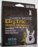 Electric Guitar String / Guitar String / Accessories (AE530)