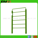 Outdoor Fitness Equipment of Free Standing Wall Bars