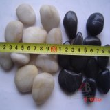 Natural Polished Pebbles for Garden Series in Dia. 2-3cm