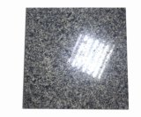 New Product Slab Price 12X12 Norway Blue Pearl Granite