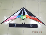 2015 Popular Sport Kite