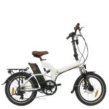 "20"" 250-500W Folding Electric Bike"