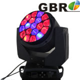 19*15W 4in1 RGBW LED Bee Eye Moving Head Light