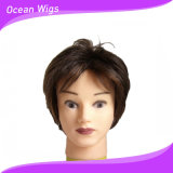 Short Synthetic Hair Wig with 100% Kanekalon Fiber Synthetic Wig (SW-201)