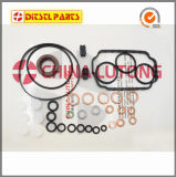 Diesel Ve Pump Seal Kit-Repair Kits for VW, Volvo, Ford