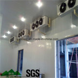 PU Cold Room for Meats/Poultry/Fishing/Fruit/Beverage