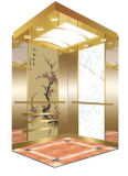 FUJI Zy Ce Approved Passenger Elevator From China Factory