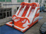 Giant Inflatable Water Slide with Pool for Adult and Kids