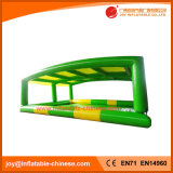 Inflatable Swimming Pool with Tent (T10-201)