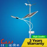 50W Lamp Powrer 8m Steel Solar Wind Hybrid System