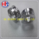 Brass Contact Screw and Special Screw From China Manaufacture (HS-ST-026)