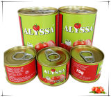 China Hot Sell High Quality No Additive 70g Canned Tomato Paste