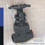 API Std Forged Steel Gate Valve