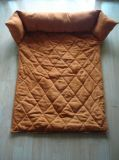 Suede Sofe Pet Couch with Pillow, Pet Bed, Pet Mat (WHPP060462)