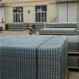 Electro Hot Galvanize Coated Welded Wire Mesh
