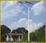 IP Rate IP68 LED Street Light AC200-240V LED Road Lights 5500lm High Lumens Projector Lamp