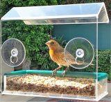 Window Acrylic Wild Bird Feeder with Suction Cups