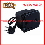 Barbecue Motor (HW-10)