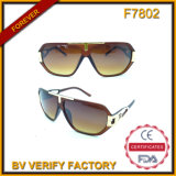 F7802 Flat Top Sunglasses Metal Deco Frame