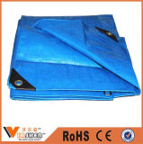 Plastic Tarpaulin Cover, PE Tarpaulin Sheet, Polyethylene Container Tarpaulin