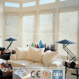 Hot Selling Aluminium Profile for Rolling Shutter/Window Shutter