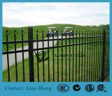 Garden Fencing/Spear Fence/Ornamental Iron Fence Hot Sale