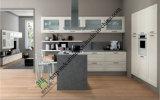 2016 New Design Classic PVC Kitchen Cabinet (zs-479)